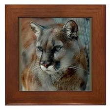 Cougar Cat Framed Tile