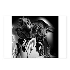 TREX Skeleton . Postcards (Package of 8)