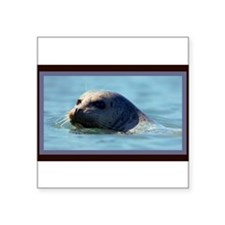 """Seal. Square Sticker 3"""" x 3"""""""