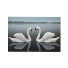 Swan Reflection Rectangle Magnet