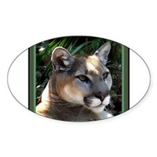 Mountain Lion Decal