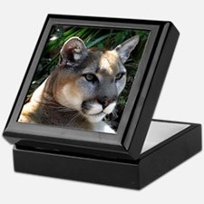 Mountain Lion Keepsake Box