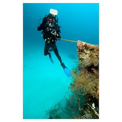 Diver exploring the Cross Wreck Poster