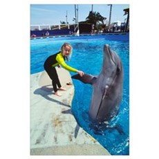 Dolphin and child Poster
