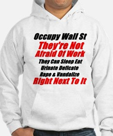 OWS Facts Hoodie