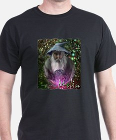 merlin the magician art illustration T-Shirt