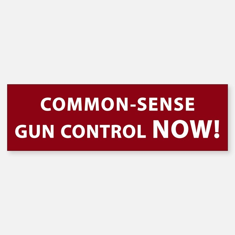 Common Sense Gun Control NOW! Bumper Bumper Sticker