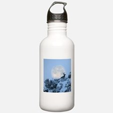 Buck deer moon Water Bottle
