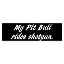 My Pit Bull rides shotgun.