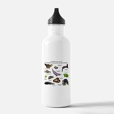 Animals of the Flooded Amazon Rainforest Water Bottle