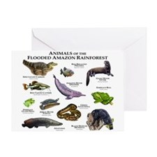 Animals of the Flooded Amazon Rainforest Greeting