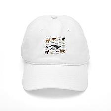 South Carolina State Animals Baseball Cap