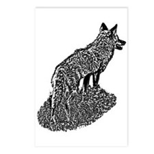 B@W Coyote Postcards (Package of 8)