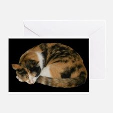 Calico Napper Greeting Card