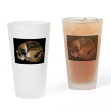 Calico Napper Drinking Glass