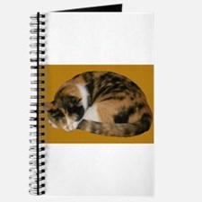 Callico Napping Journal