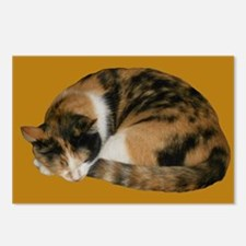 Callico Napping Postcards (Package of 8)