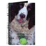 Springer spaniel Journals & Spiral Notebooks