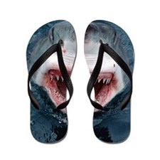 Unique Shark Flip Flops