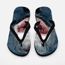 Cute Shark Flip Flops