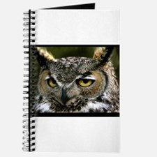 Wise Owl. Journal