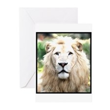 White Lion Greeting Cards (Pk of 10)