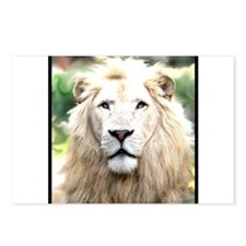 White Lion Postcards (Package of 8)