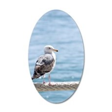 Seagull By The Seashore Wall Decal