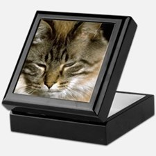 Sleepy Cat Keepsake Box