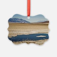 Unique Death valley national park Ornament