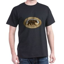 Steamboat Springs Brown Bear Badge T-Shirt