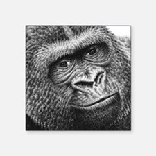"Gorilla Square Sticker 3"" x 3"""