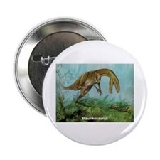 Staurikosaurus Dinosaur Button
