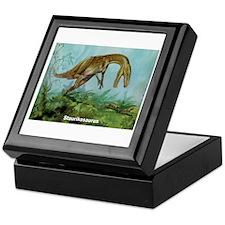 Staurikosaurus Dinosaur Keepsake Box