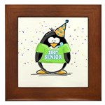 Senior 2007 Party Penguin Framed Tile