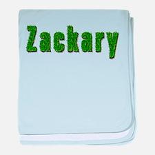 Zackary Grass baby blanket