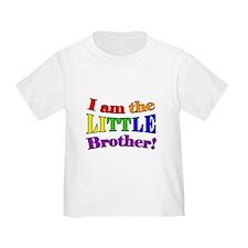Little Brother Rainbow T