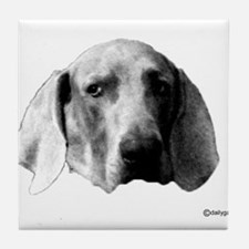 The look Tile Coaster