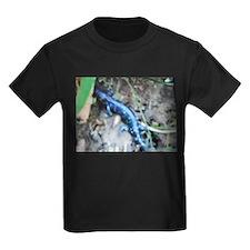 Blue Salamander T