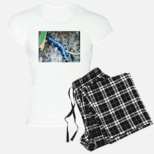 Blue Salamander Pajamas