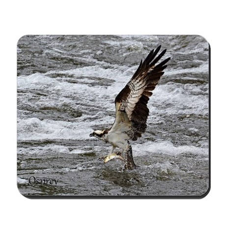Osprey with fish Mousepad
