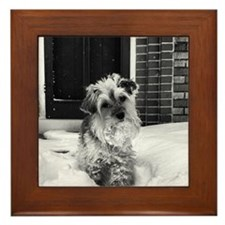 Daisy Framed Tile