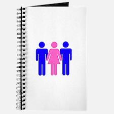Threesome (MFM) Journal