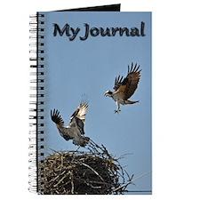 Osprey fighting Journal