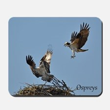 Osprey fighting Mousepad