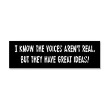 Voices In My Head Car Magnet 10 x 3