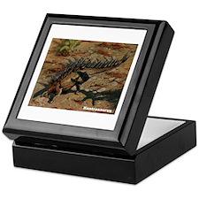 Kentrosaurus Dinosaur Keepsake Box