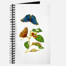 Maria Sibylla Merian Botanical Journal