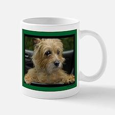 Wanna go for a ride? Mug