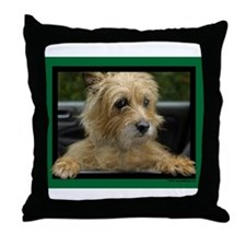 Wanna go for a ride? Throw Pillow